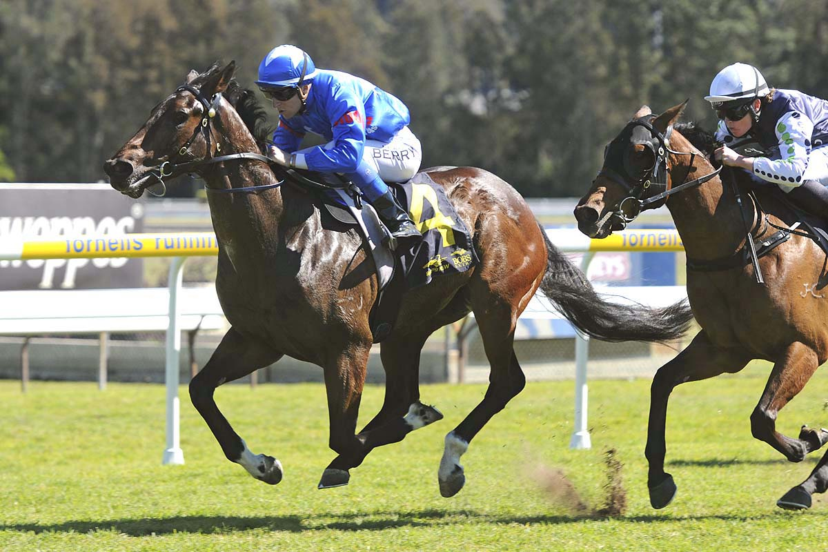 Encostanati wins at Gosford