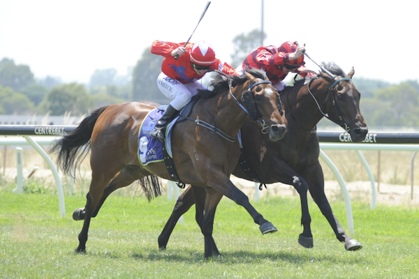 Justiceforall wins for BlueBlood