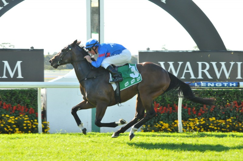 "Another City Win for BLUEBLOOD THOROUGHBREDS.  One of Australia's leading syndicators won another city race with ever consistent galloper,"" ENCOSTANATI""
