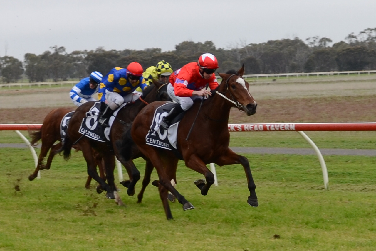 Snitzel Blitz wins at Donald