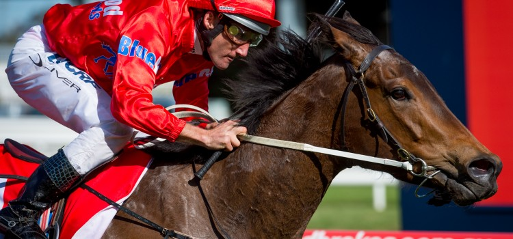 Price Was Right For Blueblood Mare