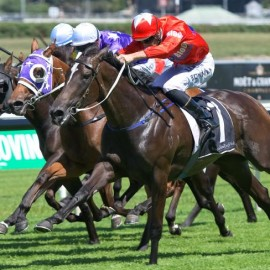 Seabrook races into Golden Slipper