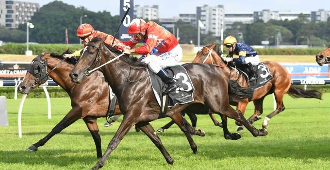SEABROOK CRACKS GROUP 1 CHAMPAGNE FOR BLUEBLOOD'S