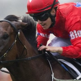ANOTHER BLUEBLOOD'S HORSE AIMING FOR GROUP 1 GLORY