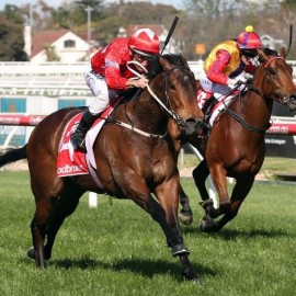 Group 3 quinella for Not A Single Doubt