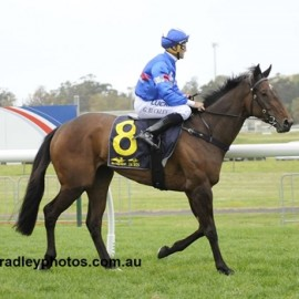 TWO IN A ROW FOR SEDANZER