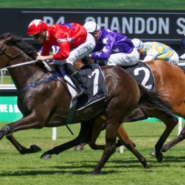 Group 1 Double For BlueBlood Thoroughbreds