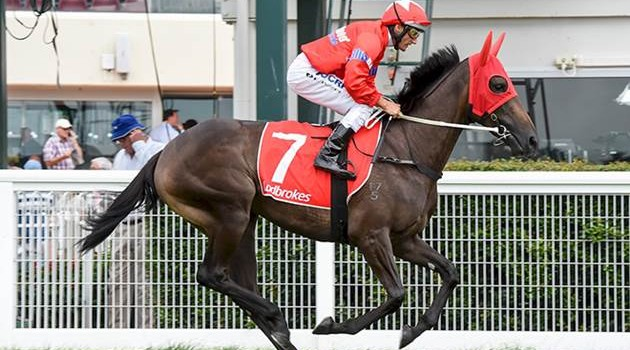 SEABROOK 2ND IN GUINEAS