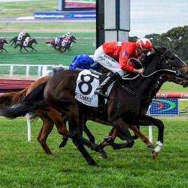 BLUEBLOOD'S A WINNING CHANCE ON ANOTHER GROUP 1 WITH SHE'S SO HIGH.