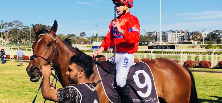 GERALD RYAN TRAINED NUKE, WINS IN TOWN!!