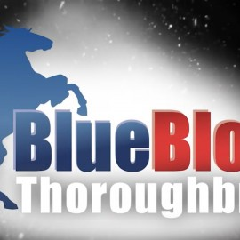 BLUEBLOOD TWO WINNERS IN 24 HOURS IN NSW AND VIC