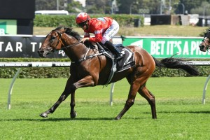 SYNDICATOR AND TRAINER ON TOP OF THEIR GAME