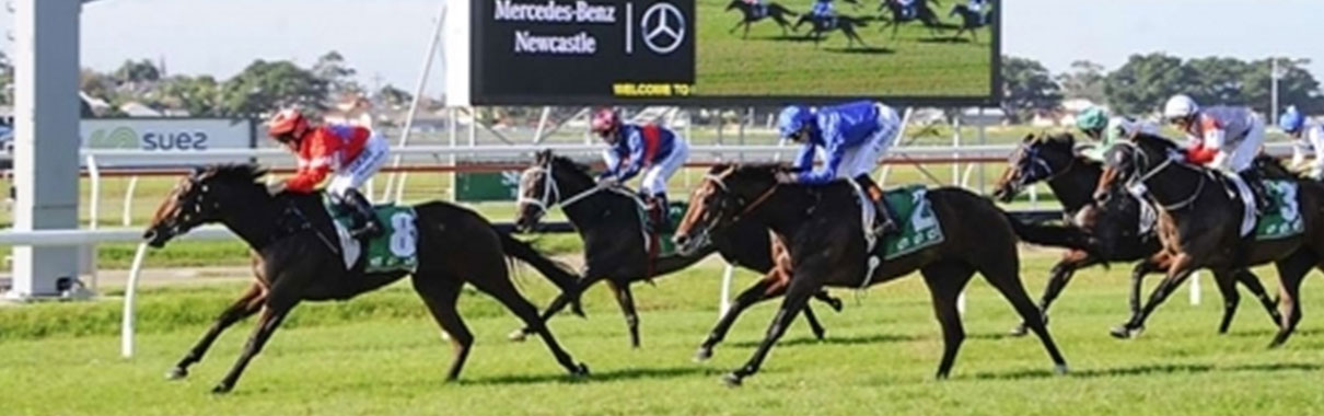 Sedanzer-wins-in-Newcastle-Race-7-290317-op