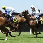 Sea-Sharp-wins-at-Kembla-Grange-12th-November-2016